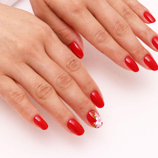 Conquer Nail Artist Skills Package: Certification Level 3