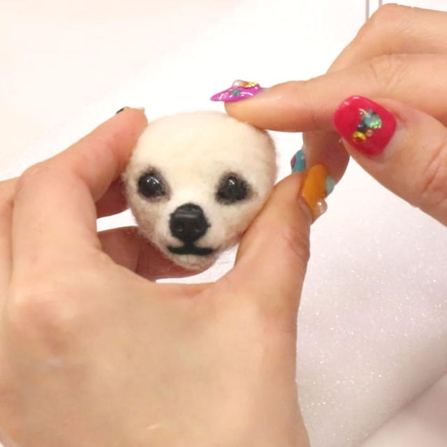 Realistic Cute Maltese Face Made with Wool