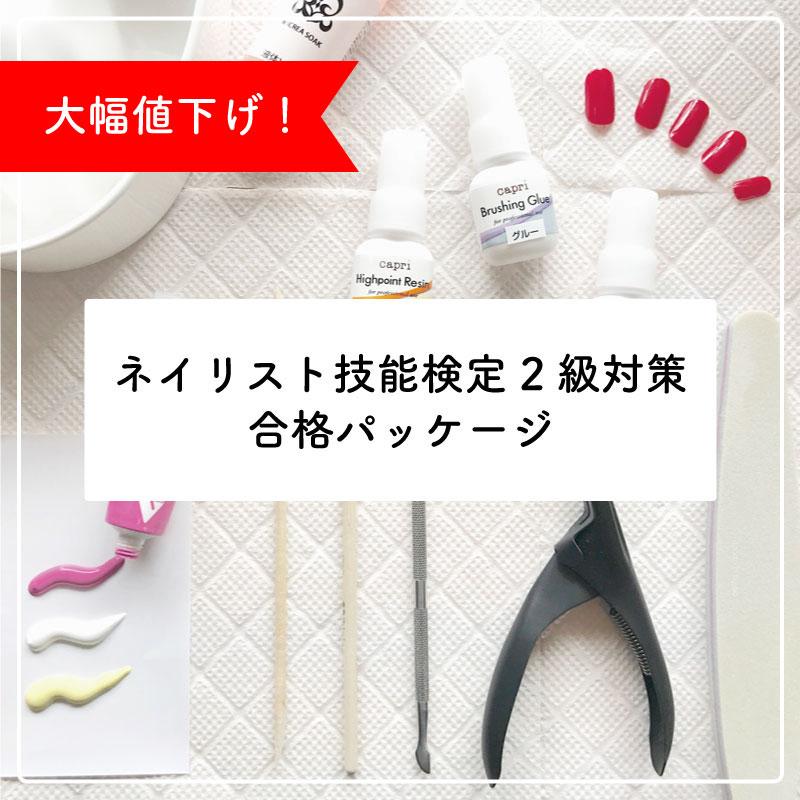 ★道具つき★ネイリスト技能検定2級対策 合格パッケージ