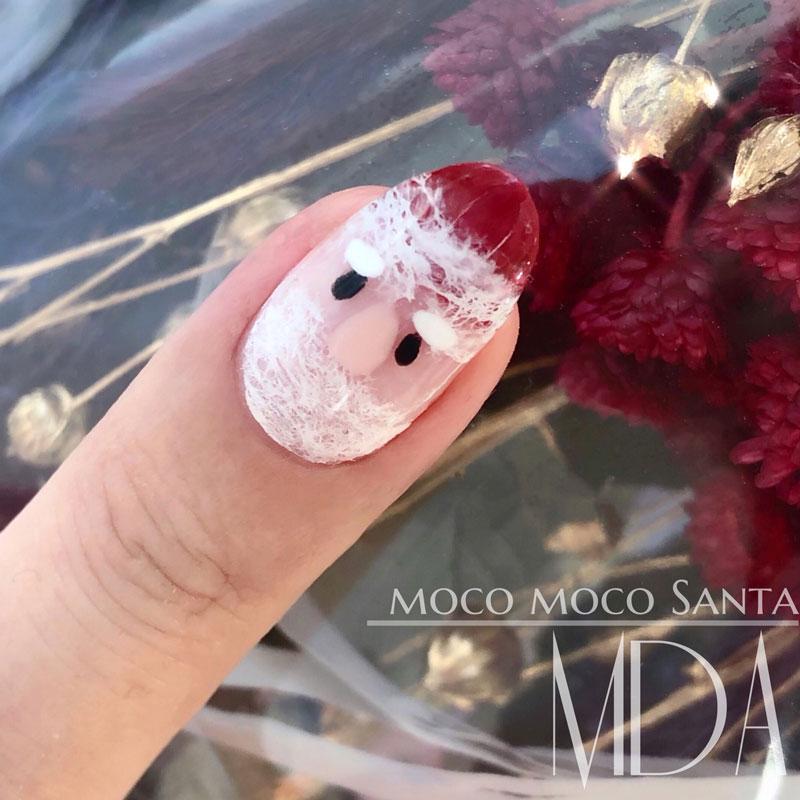 Fluffy Santa Claus
