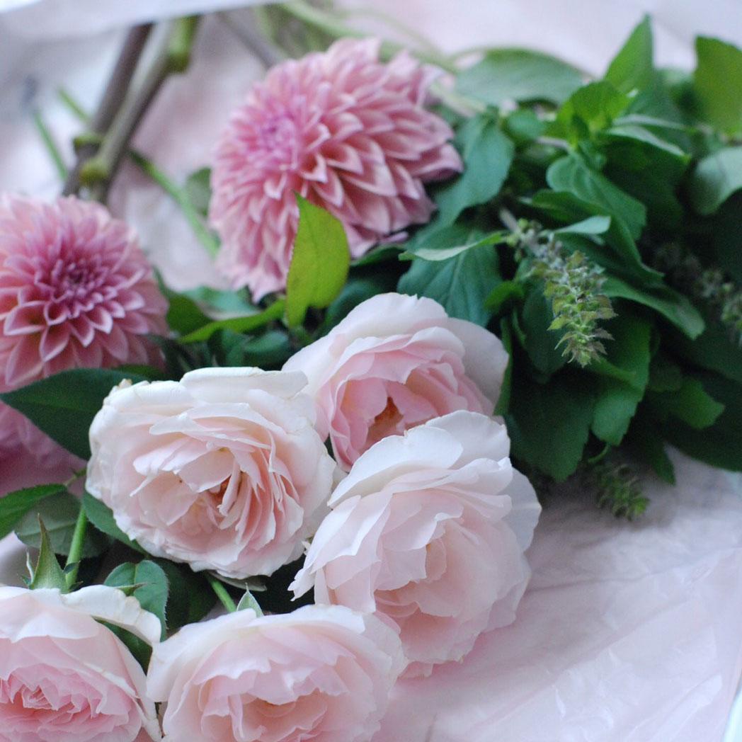 お花を長持ちさせるための管理方法