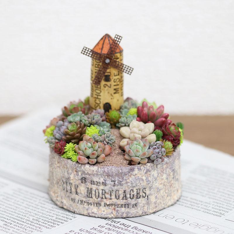 風車の小さな箱庭