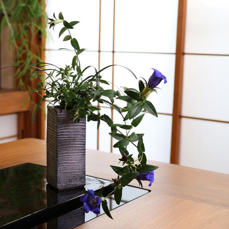 リンドウを使った盆栽寄植えアレンジメント