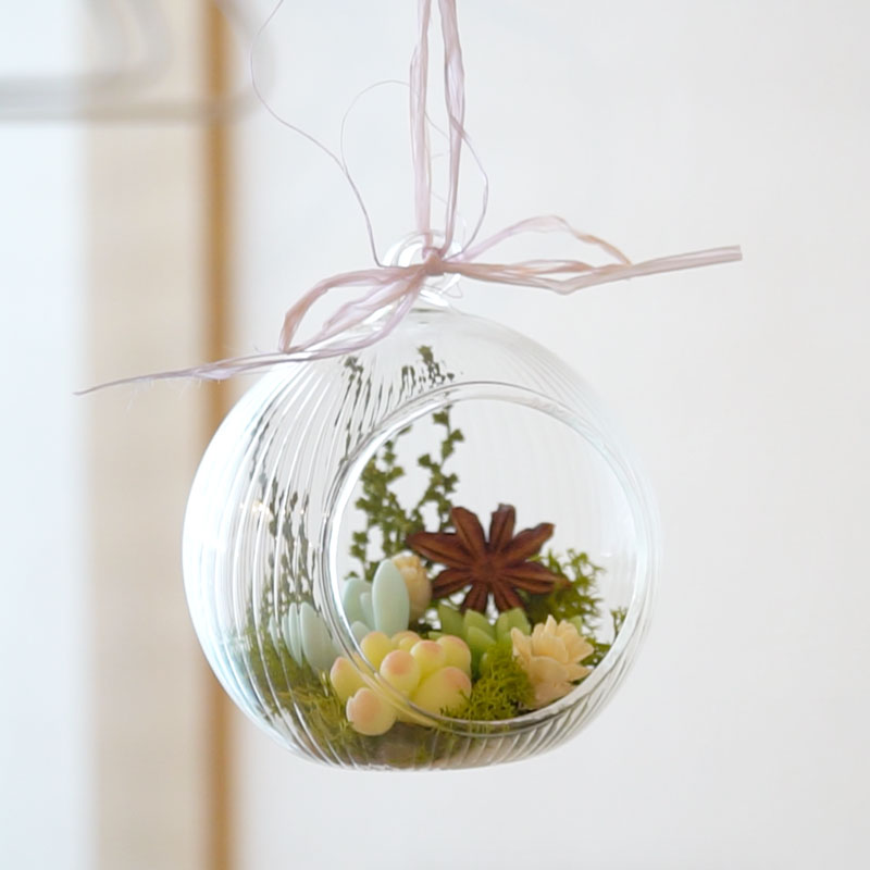 Terrarium using three succulents