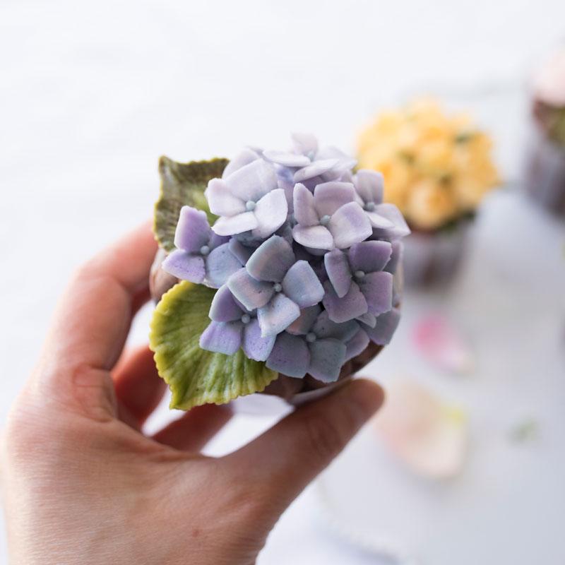 【日本語字幕】紫陽花