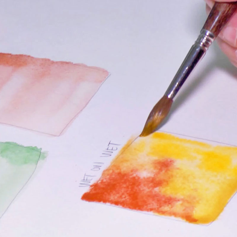 Watercolor Introduction -Materials and Basic Brush Techniques-