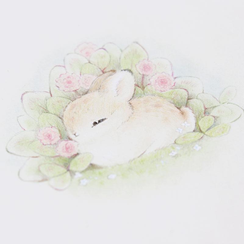 毛茸茸的兔子