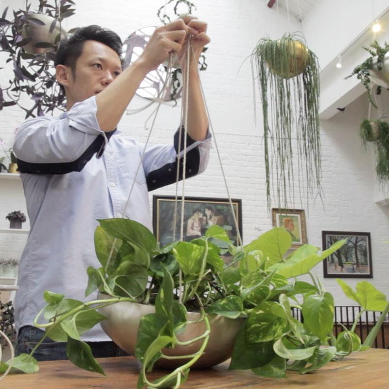 植物衣架的制作方法