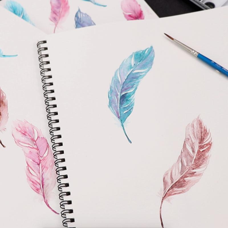 水彩插畫 羽毛