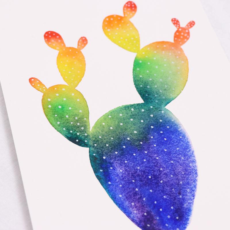 七色仙人掌