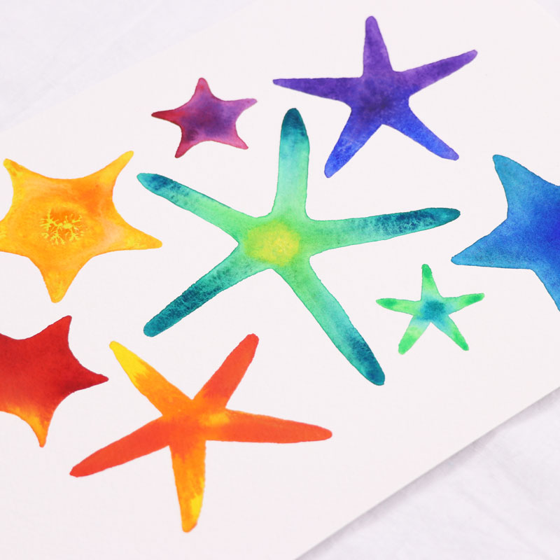 Rainbow Starfish Collection
