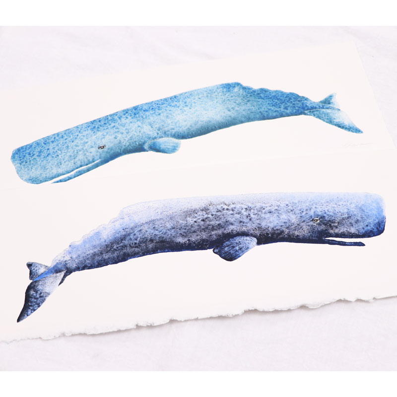 Texture with Gemstone Watercolor Paints -Sperm Whales-