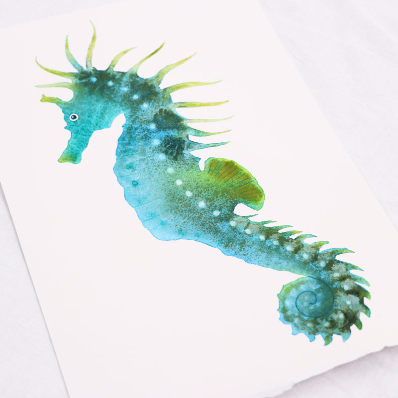 Multi-coloured Seahorse