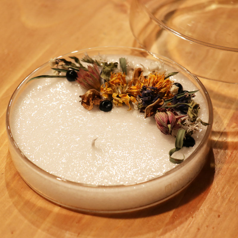 Petri Dish Essential and Palm Oil Candle