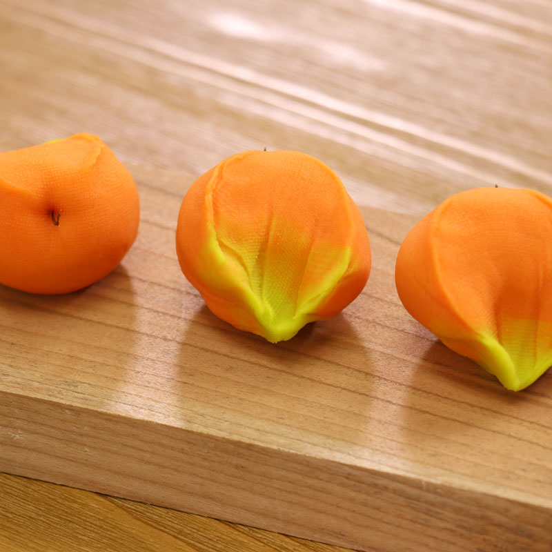 ほおずきと柿